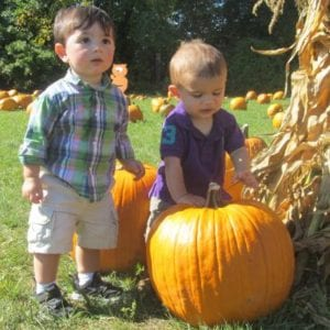PUMPKIN PATCH: Late Sept. - Halloween